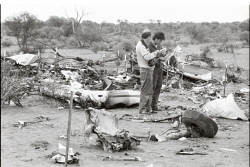 TWA-0083081 © WestPix Emergency workers at the wreckage of the Mitsubishi MU2 aircraft which crashed killing 10 occupants at Leonora in December 1988. Picture: Joe Wheeler