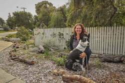 TWA-0093195 © WestPix Lea Hooper and dog Oscar with her lovingly restored Hamilton Hill verge. Picture: Michael Wilson, The West Australian.