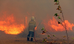 WAN-0000233 © WestPix Fire surrounds the Maes home in Gibbs Road. Pic Michael O'Brien - The West Australian - 3rd February 2014 -