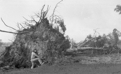 WAN-0031859 © WestPix NEG FILE WG 2633  - storm damage. 5 April 1978. Picture: Ron D'Raine  The West Australian